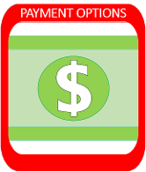 Payment Options Portal